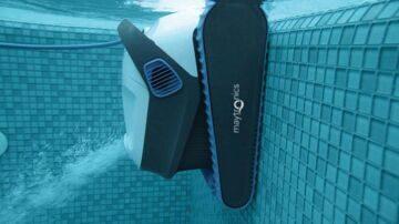 dolphines2003
